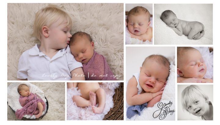 Buffalo Newborn Pictures